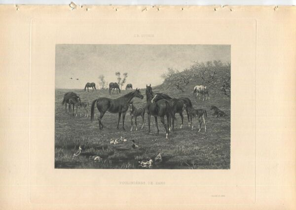 ANTIQUE BROOD MARES OF BLOOD EQUESTRIAN HORSE MARE FOALS THOUROUGHBREDS PRINT