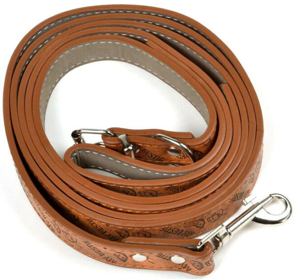 Pet Dog Leather Leash Chrome Belt Buckle Skin Friendly Leather Collar Walk Leash $7.99