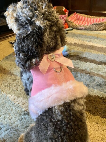 Smoochie Pooch Dog Dress Jacket $11.99