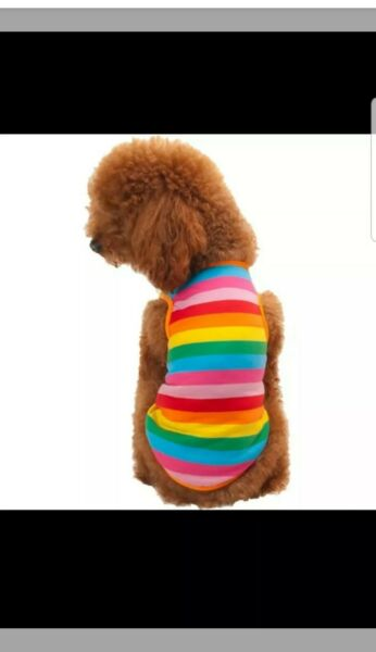 MULTI COLOR SMALL DOG T SHIRT SUMMER SHIRT $5.00