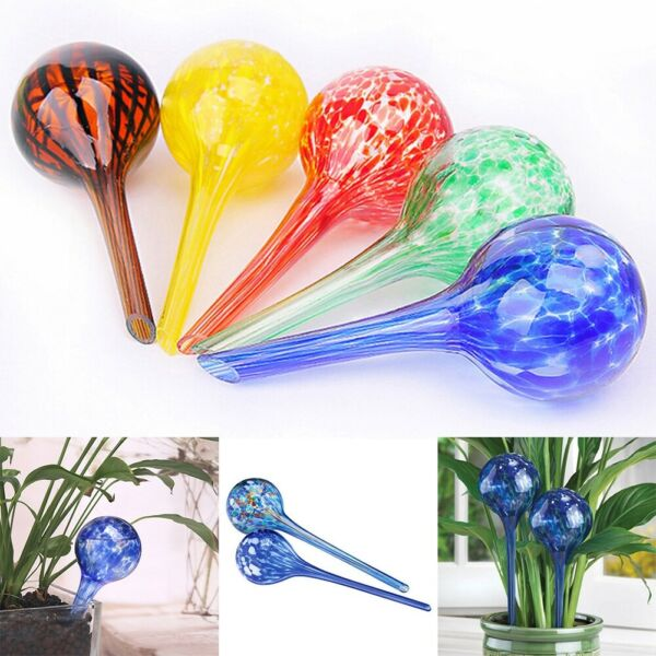 Watering Device Glass Ball Automatic House Outdoor Plants Pot Bulb Self-Watering $7.35