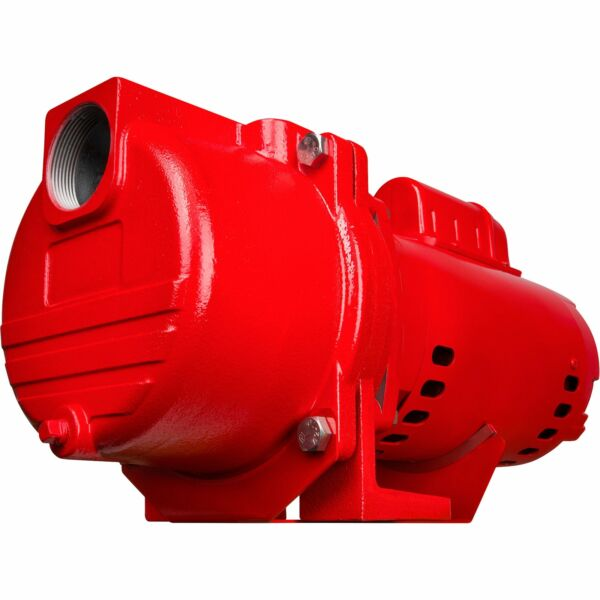 Red Lion Cast Iron Sprinkler Pump 4560 GPH 2 HP 2in amp; 1 1 2in Ports RL33CSS $354.99