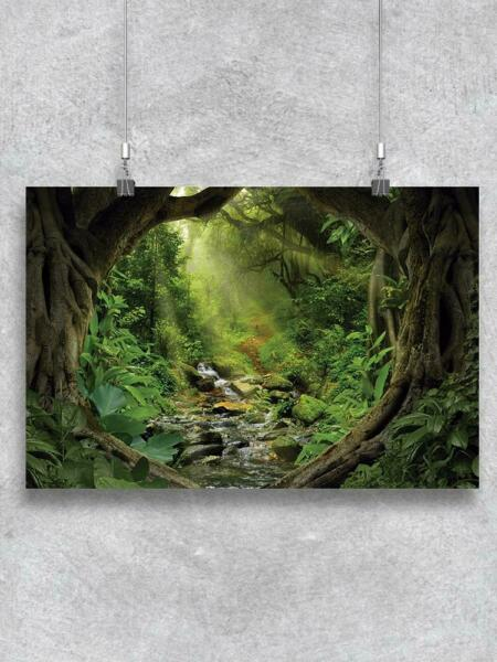 Jungle With Sunbeams Poster Image by Shutterstock $13.99