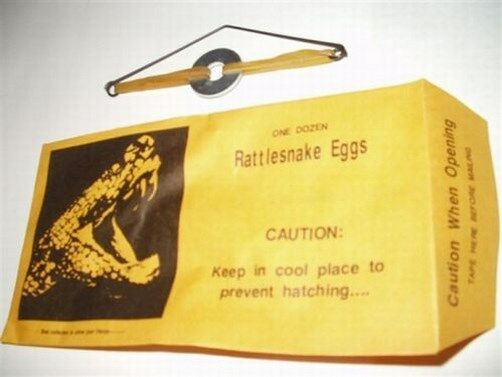1 RATTLESNAKE EGGS PRANK ENVELOPES ~ Joke Gag Gift Magic Trick Fun!