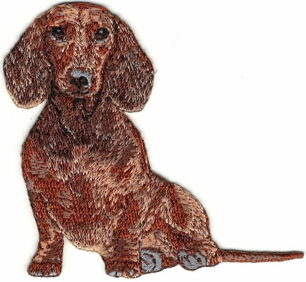 2 7 8quot; x 3quot; Sitting Dachshund Dog Breed Embroidered Patch $2.99
