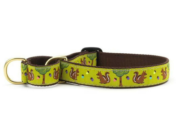 Dog Martingale Collar Up Country Made In USA Nuts amp; Squirrels S M L XL $23.00