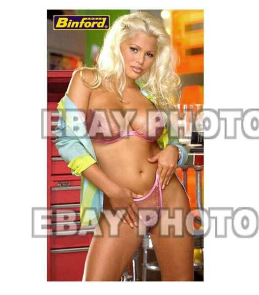 Fridge Magnet Sexy Binford Tools Tool Time Girl Girl babe sexy lingerie model