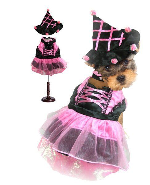 High Quality Dog Costume PINK POM POM WITCH COSTUMES Dogs As Halloween Witches $47.89