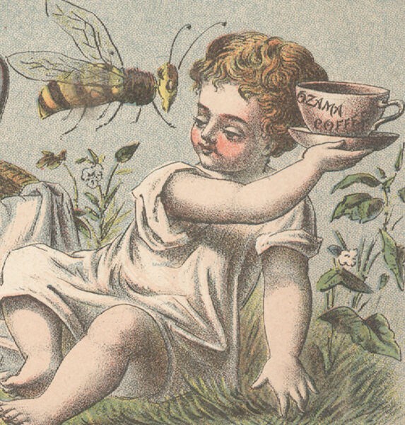 OZAMA COFFEE TRADE CARD GIANT BEE AFTER COFFEE E amp; R MEAD Jr. amp; CO. NYC A578