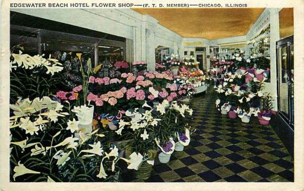 Postcard Edgewater Beach Hotel Flower Shop Chicago Illinois - used 1949