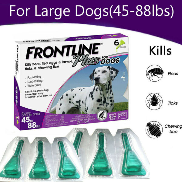 Frontline Plus Flea&Tick Treatment Control For Large Dogs (45-88lbs)  6 Dose
