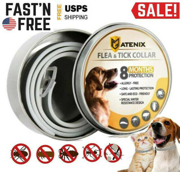 Dewel Flea and Tick Collars for Large Dog Flea Tick Control 8 Month Protection $10.99