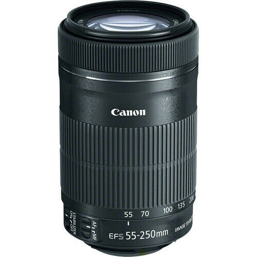 Canon EF S 55 250mm f 4 5.6 IS STM Lens 8546B002