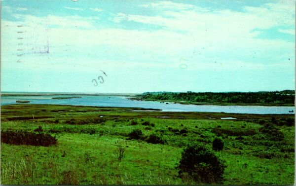 Cape Cod MA Pleasant Bay Fort Hill Postcard used 14573