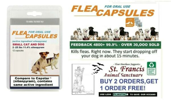 St. Francis Animal Rescue SMALL CAT DOG FLEA Killer control dog cat 16 doses $12.98