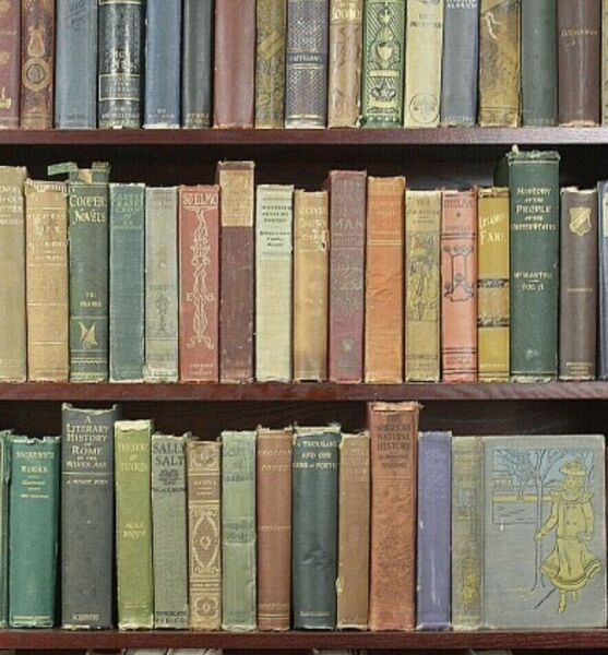 Old Vintage antique Books Lot of 10 Random unsorted mixed wholesale crafts