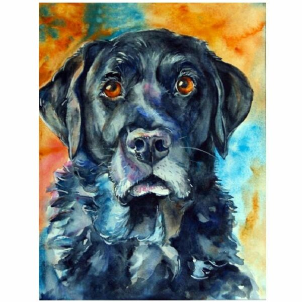 Dog DIY Diamond Painting Portrait House Pet Embroidery Design House Wall Display $12.99