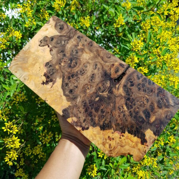Amboyna Burl Exotic Black Wood Lumber Turning Block Live Edge Vitex pinnata L.#2