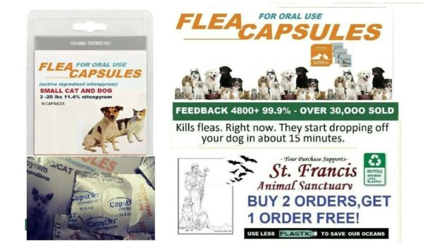 Capstar nitenpyram SMALL DOG and other flea control at low PRICES TOO $15.95