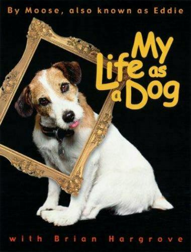 My Life as a Dog Moose Hargrove Brian Hardcover Used Very Good $6.29