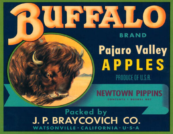 CRATE LABEL BUFFALO PAJARO VALLEY APPLES CALIFORNIA FRUIT VINTAGE POSTER REPRO