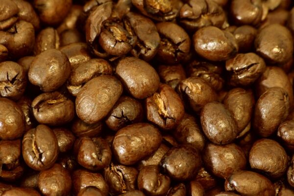 5 10 15 lbs Tanzanian Northern Peaberry Premium Coffee Beans Fresh Daily