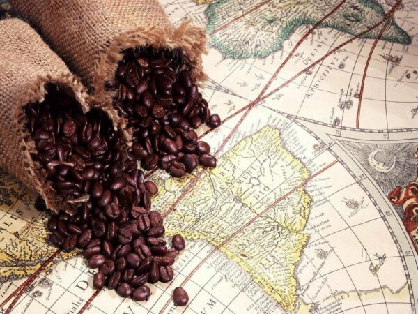 5 10 15 lb Peru Approcassi Cajamarca Fair Trade Organic Shade Grown Coffee Beans