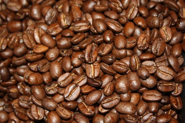 5 10 15 lbs Kenya AA+ Karundul Coffee Beans Finest Auction Lot Superior Grade