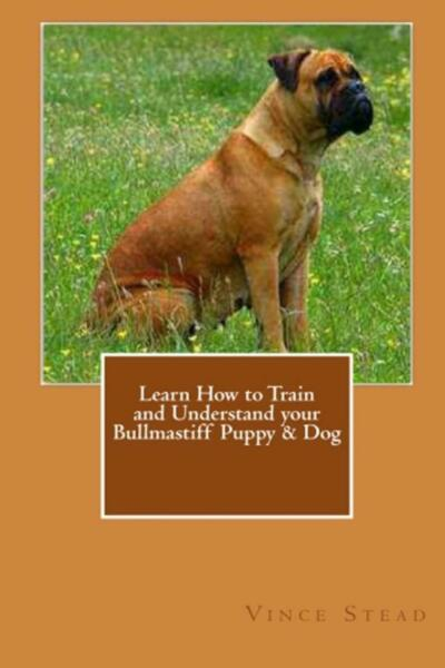 Learn How to Train and Understand Your Bullmastiff Puppy & Dog by Vince Stead (E