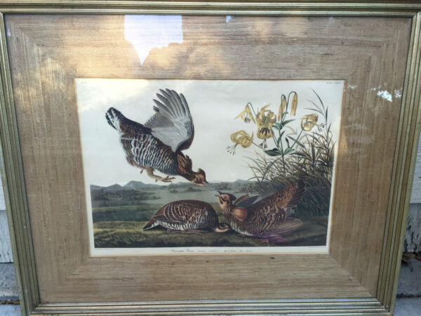Hand Painted Engraving quot;Pennated Grousequot; Behind Glass Wood Burlap Frame L.ACal.