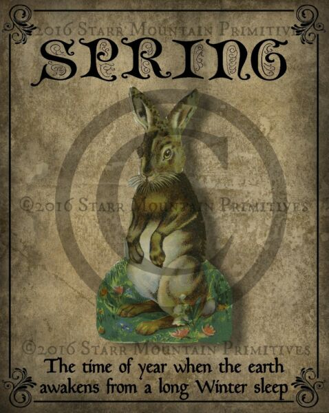 Primitive Spring Saying Poem Bunny Rabbit Hare Easter Picture Print 8x10