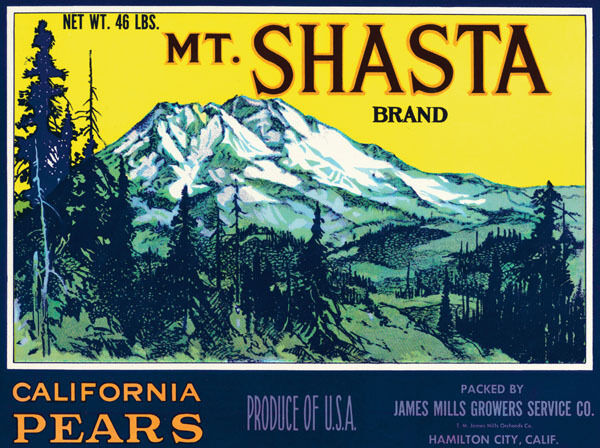 MT. SHASTA CALIFORNIA PEARS USA PRODUCE CRATE LABEL VINTAGE POSTER REPRO SMALL
