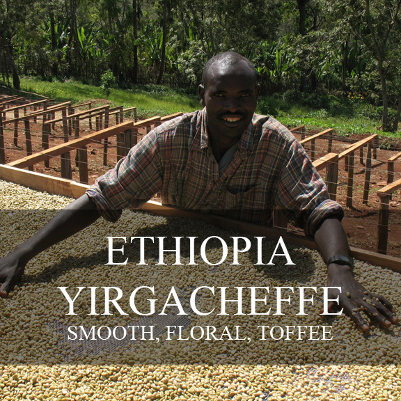 up to 100 lbs Ethiopian Yirgacheffe Misty Valley Natural Process Raw Coffee Bns