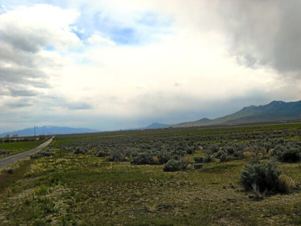 RARE! 4.77 ACRE NEVADA RANCH