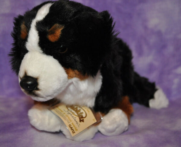 Webkinz Signature RARE BERNESE MOUNTAIN DOG ~Brand New With Tag ~WKS1017~
