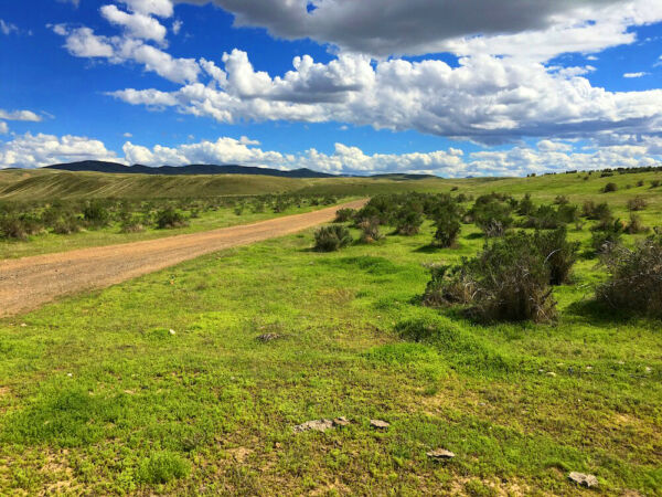 RARE 80 ACRE NEVADA RANCH! EZ ACCESS~PAVED ROAD~SURVEYED! CASH SALE! NO RESERVE!
