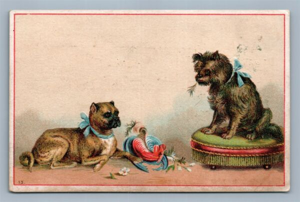 FANCY DOGS SILVER STAR BAKING POWDER VICTORIAN TRADE CARD DAYTON OH $13.99