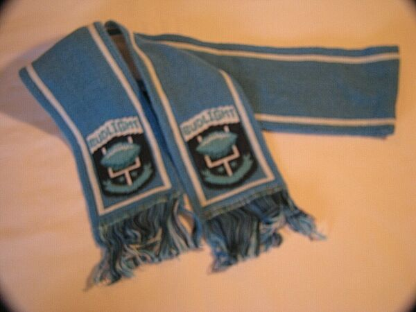 NEW OLD BUDWEISER BUD LIGHT FOOTBALL BLUE SCARF