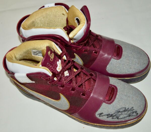 AUTO UDA LE3 LEBRON JAMES LA LAKERS NIKE ZOOM WISE SHOES