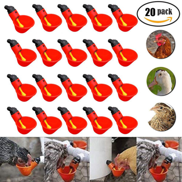 20 Pcs Poultry Water Drinking Cups Plastic Poultry Chicken Hen Automatic Drinker $15.92