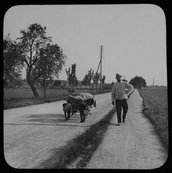 ANTIQUE Magic Lantern Slide DOG CART NEAR BADEN C1909 PHOTO GERMANY BAVARIA GBP 30.00