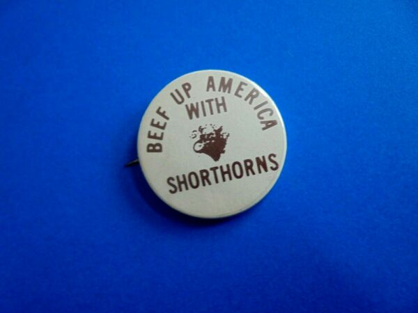 Cool Vintage Beef Up America with Shorthorns Cattle Ag Farm Pinback