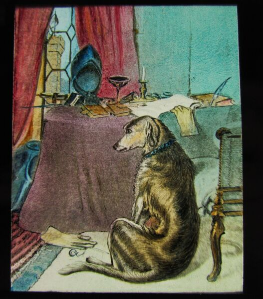 Glass Magic Lantern Slide DOG BY A TABLE C1890 VICTORIAN DOGS GBP 15.00