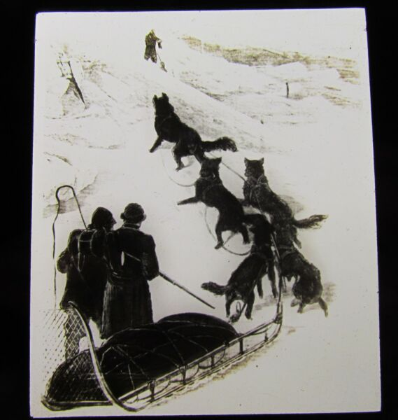 Glass Magic Lantern Slide DOG SLEDGE TEAM C1900 HUSKIES DRAWING GBP 15.00