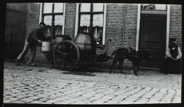 Magic Lantern Slide DOG CART EDAM C1910 PHOTO NETHERLANDS GBP 15.00