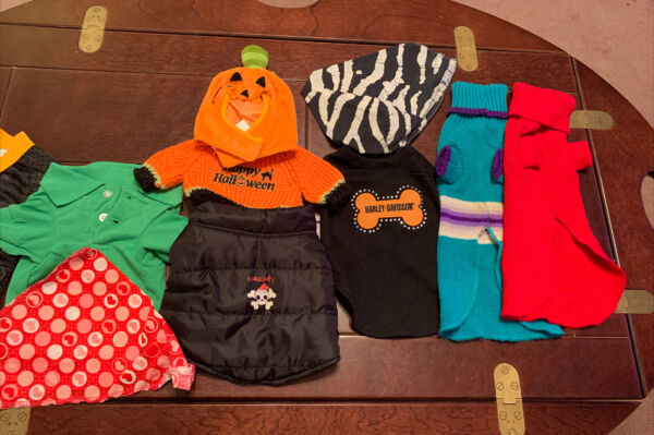 Size: Small Dog clothing lot of 9 $12.00