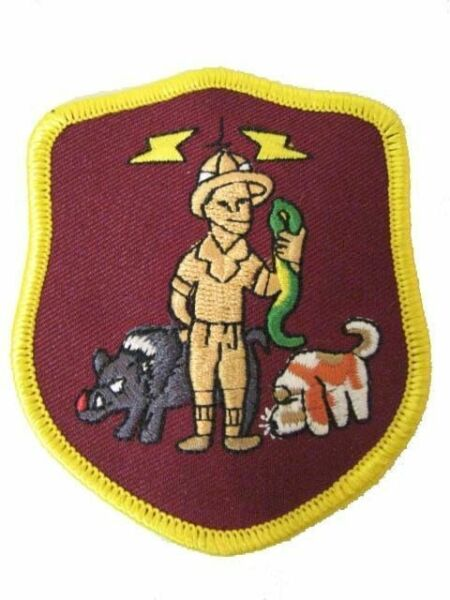 USAF Air Force Black Ops Big Safari Rivet Joint RC-135 Hogs Spy Military Patch