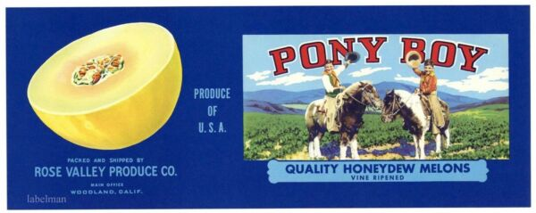 PONY BOY Brand Woodland Honeydew Melons ***AN ORIGINAL PRODUCE CRATE LABEL***