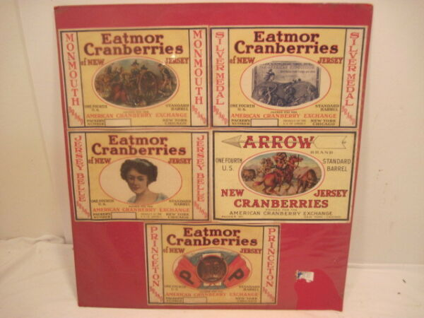 VINTAGE PRODUCE CRANBERRIES PAPER CRATE ADVERTISING PRINCETON ARROW JERSEY