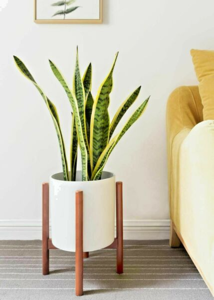 Mid Century Modern Plant Stand Wood Pot Flower Holder Display Rustic Decor 10quot; $29.99